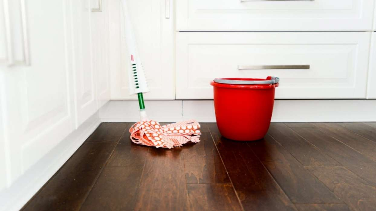 Proljetno čišćenje kuće